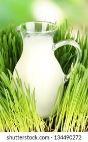 Glass pitcher of milk standing on grass close up