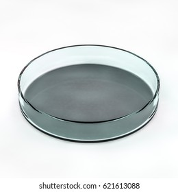 Glass plate for Analyzes. 3D rendering