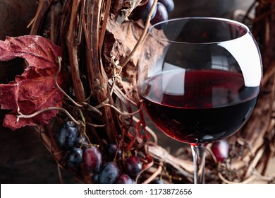 Glass of red wine with grapes and dried vine leaves.