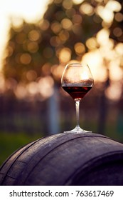 A glass of red wine on an autumn vineyard