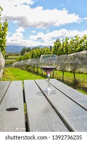 Glass with red wine on table in vineyard in Hawkes Bay, New Zealand
