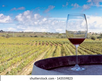 Glass of red wine on a wooden barrel with a vineyard background