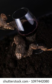 Glass of Red Wine with Traditional Wood Vine in a Black Background