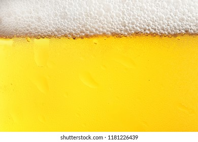 Glass of tasty beer with foam, closeup