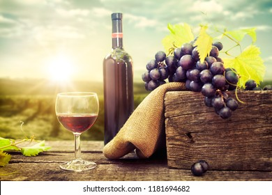 Glass of tasty red wine with grapes and bottle in the background