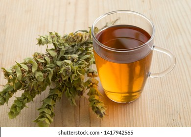 Glass of tea with twigs of dried green ironwort, sideritus, for herbal tea