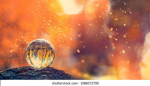 glass transparent ball from the reflection of the trees on blurred natural background. beautiful still life with glass ball on blurred abstract background. long wide banner