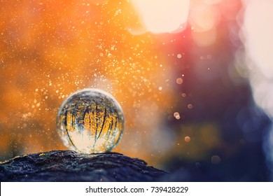 glass transparent ball (sphere) from the reflection of the trees on blurred natural background. blurred abstract background. beautiful still life with glass ball on background of nature.