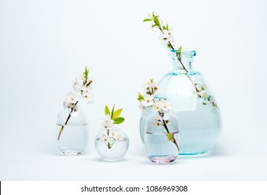 Glass Vase and bottles with blooming white cherry flowers on a blue background