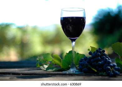 Glass of wine in the vineyard on a rustic table with petit e noir grapes.