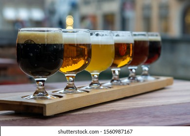 Glasses of Craft Beer in a Row Tasting