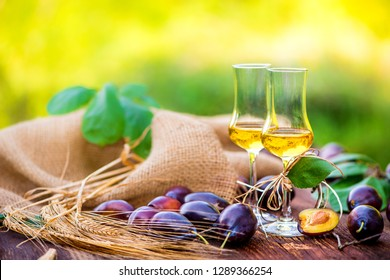 Glasses of fine spirits served in the garden in summer on a rustic wood table