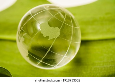 Glasses transparent globe lie on  green leaf  background. concept for environment and conservation