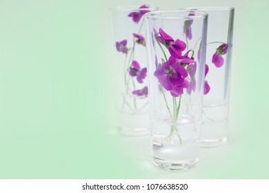 Glasses with Viola flowers .Background for herbal medicine  and advertising natural products for skin care and body care,herbal farmacy