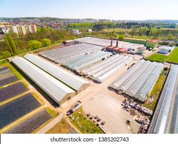 Glasshouses for flowers, vegetables and marijuana growing. Modern agriculture from above. Aerial view to garden center.