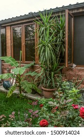 Glazed summer kitchen in the courtyard among ornamental plants in pots, bushes of flowering roses and clay jugs against the wall
