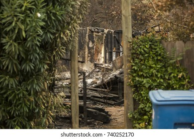 GLEN ELLEN, CALIFORNIA/ USA - OCT 16, 2017: greenery on the fence of a destroyed home in a Sonoma County Neighborhood. Fires in California have burned over 220,000 acres and destroyed 5700 structures.