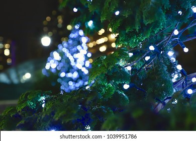 Glimpse of the Lights further away