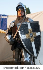 Glistening Knight holding shield and sword