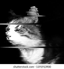 Glitch art, LED analog TV test, texture screen, paranormal background, cat