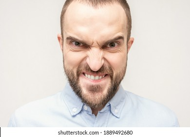 Gloating bearded man, portrait of an angry man with a grimace on his face, white background, close-up