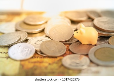 Global business and saving concept. Close up of pig /piggy miniature figure on pile of coins and world map.