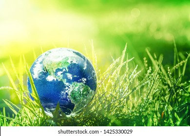 Global earth in sun light on green grass with rain drops on the grass, Earth and water concept, Elements of this image furnished by NASA