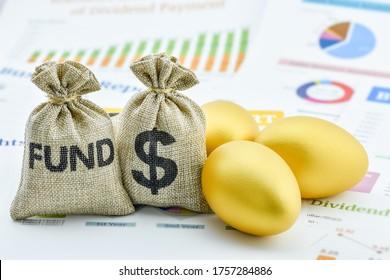Fondsinvestitionen, Finanzkonzept: Geldmarken, US-Dollar und goldene Eier auf einem zusammenfassenden Unternehmensbericht