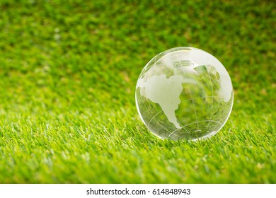 Global glass on the green grass.