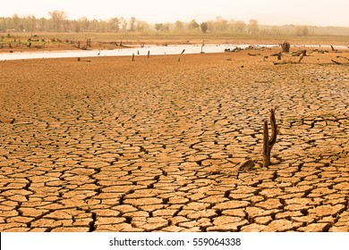 global warming and El Nino effect.