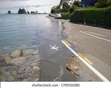 Global Warming Sea Levels rising - Shutterstock ID 1709550385