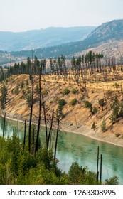 Global Warming. View of barren land following recent fire near Kamloops, British Columbia, Canada, North America