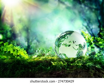 globe resting on moss in a forest - Europe and Africa - environment concept
