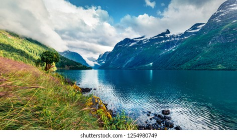 Gloomy summer view of Lovatnet lake, municipality of Stryn, Sogn og Fjordane county, Norway. Colorful morning scene of Norway. Beauty of nature concept background.