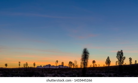 Glorious sunset in the nature with trees in silhouette and the outline of the Olgas mountains in the background