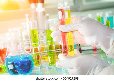 Gloved hand hold the test tubes in laboratory