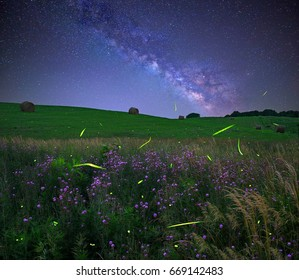 The glow of fireflies under The Milky Way in the Ohio countryside.