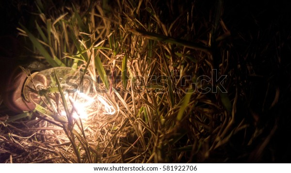glowing electric light tube on the ground with dry grass, abstract scene for nature and technology