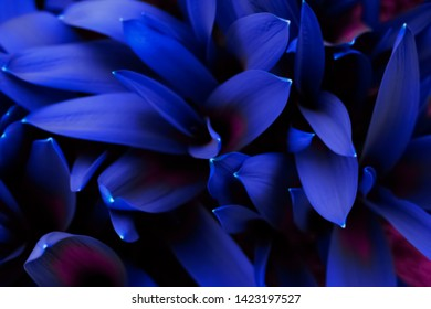 Glowing Neon Color Fluorescent Leaves Or Foliage. Flat Lay Decorative Blurred Background.