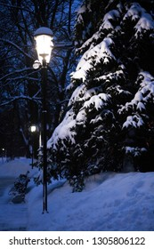Glowing street lamp near fir tree under snow in a park