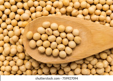 Glycine max is scientific name of Soybean legume. Also known as Soya Bean and Soja. Grains in wooden spoon. Close up.