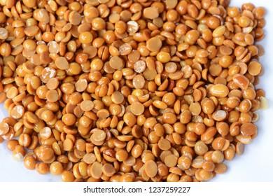 Glycine max seed