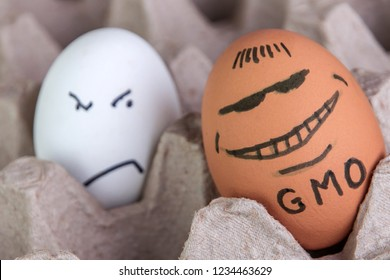 GMO food: the usual egg is unfriendly glanced at the unusually huge contented genetically modified egg