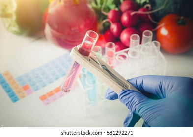 GMO Genetically modified food in lab concept. Analyst in gloves takes test tube.