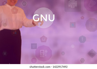 GNU - technology and business concept