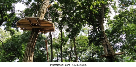 Go Ape Adventure. Located in national parks and local recreational facilities, Go Ape is a challenging obstacle course in the trees. Wooden and rope structures for movement. Sports fun competitions