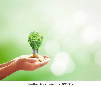 Go green concept: Human hands holding light bulb of growth tree on golden coins over blurred nature background