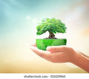 Go green home service concept: Human hands holding earth globe of trees on blurred autumn sunrise background