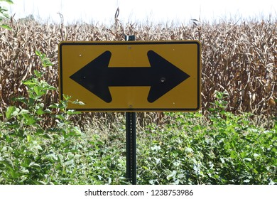 Go left or go right, but don't go into the cornfield, says this yellow highway sign found on the border of a cornfield in Illinois, almost buried in the weeds