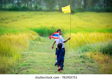 Go to school,Little girl in school uniform walking home on the rice field,little girl in traditional school dress at countryside,thailand.